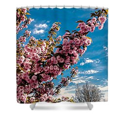 Refreshing Shower Curtain by Robert Bales