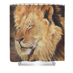Remembering  Sold Prints Available Shower Curtain