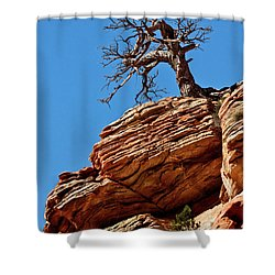 Remnants Of A Struggle Shower Curtain by Christopher Holmes