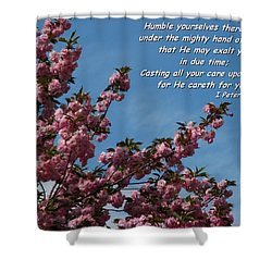 Renewal Shower Curtain