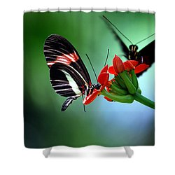 Reservations For Two Shower Curtain by Skip Willits