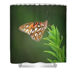 Rest Your Wings Shower Curtain