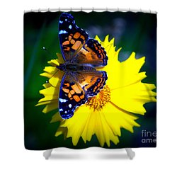 Resting Butterfly Shower Curtain by Kevin Fortier