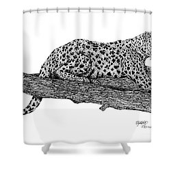 Resting Days Shower Curtain by Elizabeth Harshman