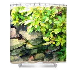 Rhodas And Stones Shower Curtain