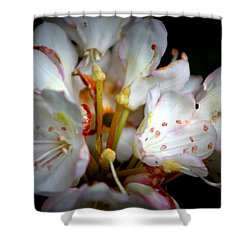 Rhododendron Explosion Shower Curtain