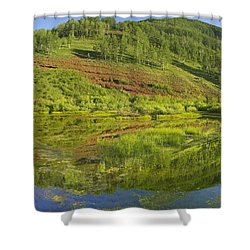 Rico Mountains Reflected In Dolores Shower Curtain by Tim Fitzharris