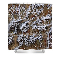 Rime-covered Brick And Stone Wall Shower Curtain by Mark Taylor