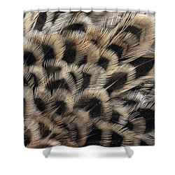 Ring-necked Pheasant Phasianus Shower Curtain by Flip De Nooyer