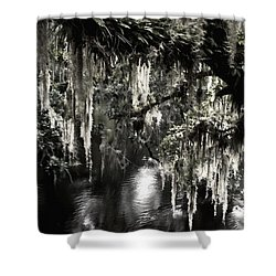 Shower Curtain featuring the photograph River Branch by Steven Sparks