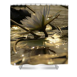 River Lily Shower Curtain