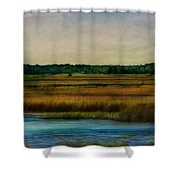 River Of Grass Shower Curtain by Judi Bagwell