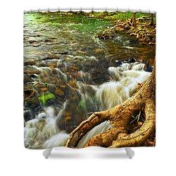 River Rapids Shower Curtain by Elena Elisseeva