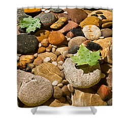 River Stones Shower Curtain by Steve Gadomski