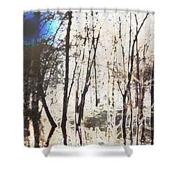 Shower Curtain featuring the photograph River Trees by Donna  Smith
