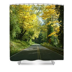 Road Through Autumn Shower Curtain