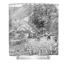 Road Travel Shower Curtain by Granger