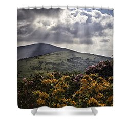 Roan Mountain Afternoon Shower Curtain by Rob Travis