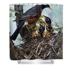 Robin And Babies In Nest Shower Curtain by Jill Battaglia