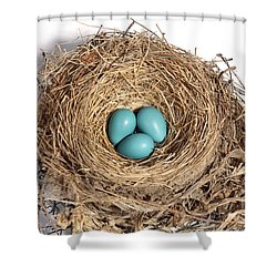 Robins Nest With Eggs Shower Curtain by Ted Kinsman