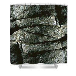 Rock Eye Of Ogunquit Shower Curtain by Nancy Griswold