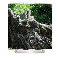 Rock Formation 2 Shower Curtain by Maria Urso