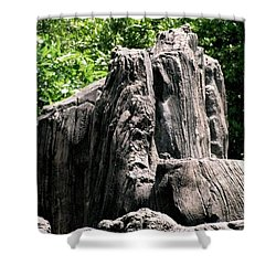 Rock Formation Shower Curtain by Maria Urso