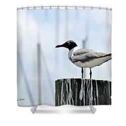 Rockport Harbormaster Shower Curtain
