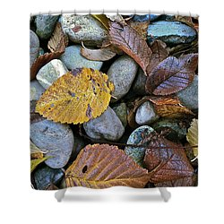 Shower Curtain featuring the photograph Rocks And Leaves by Bill Owen
