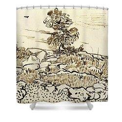 Rocky Ground At Montmajour Shower Curtain by Vincent van Gogh
