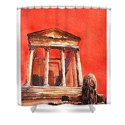 Roman Ruins- Tunisia Shower Curtain by Ryan Fox