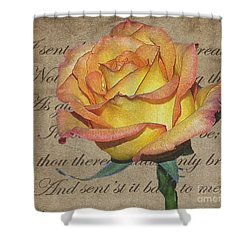 Romantic Rose Shower Curtain