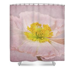 Romantico Shower Curtain by Angela Doelling AD DESIGN Photo and PhotoArt