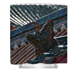 Rooftop Dragon Shower Curtain