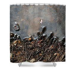Roots In Water Shower Curtain by Kay Lovingood