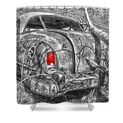 Roots Of A Journey  Shower Curtain by Jerry Cordeiro