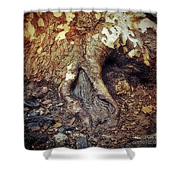 Roots Shower Curtain by Silvia Ganora