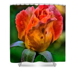 Shower Curtain featuring the painting Rose by Lynne Jenkins