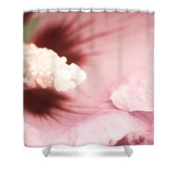 Rose Of Sharon Shower Curtain by Hannes Cmarits