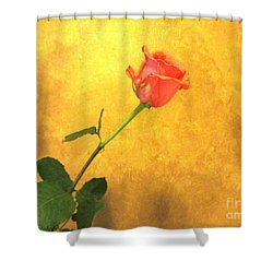Shower Curtain featuring the photograph Rose On Leather by Susan Carella
