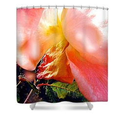 Rose Underneath By Anna Porter #flowers Shower Curtain