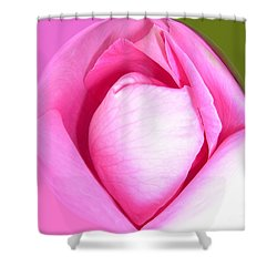 Rose1 Shower Curtain