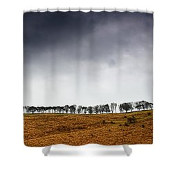 Row Of Trees In A Field, Yorkshire Shower Curtain by John Short