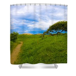Rubjerg Path Shower Curtain