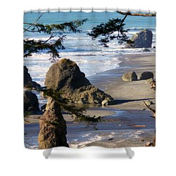 Shower Curtain featuring the photograph Ruby Beach Iv by Jeanette C Landstrom