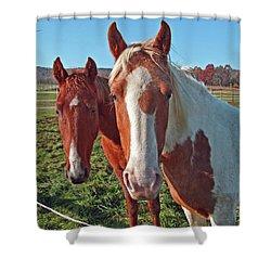Ruff 'n Reddy Shower Curtain
