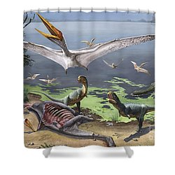 Rugops Primus Dinosaurs And Alanqa Shower Curtain by Sergey Krasovskiy
