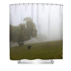 Rural Fog Shower Curtain by Mike  Dawson