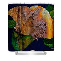 Rust Texture 3  Shower Curtain by Barbara Griffin
