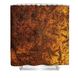 Rusty Background Shower Curtain by Carlos Caetano